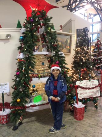 Bedford, Wirginia: Festival of trees