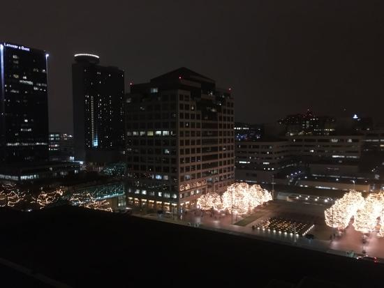 The Westin Crown Center: View from our room