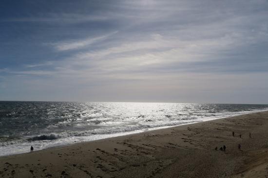 Nauset Light Beach: Playa