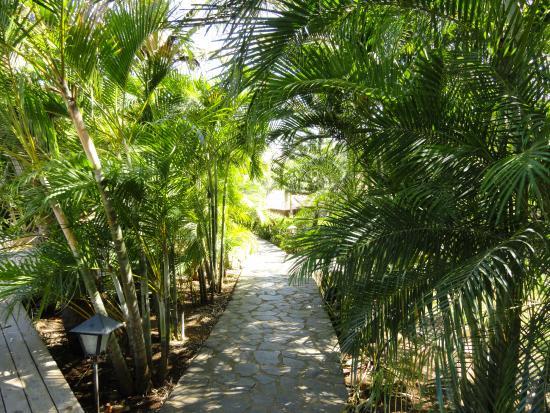 El Sabanero Eco Lodge: Hotel Grounds