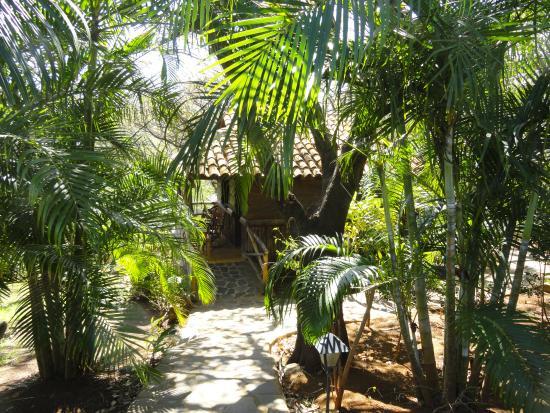 El Sabanero Eco Lodge照片