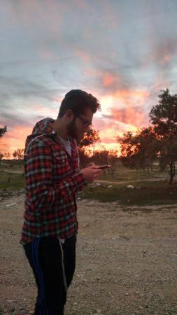Sde Boker, Израиль: The Desert Olive Farm