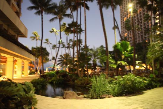 The Hilton Hawaiian Village Picture Of Hilton Hawaiian