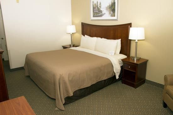 The Country Inn at the Mall : King Room
