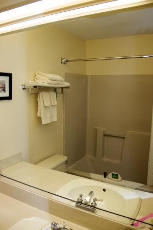 The Country Inn at the Mall : Bathroom