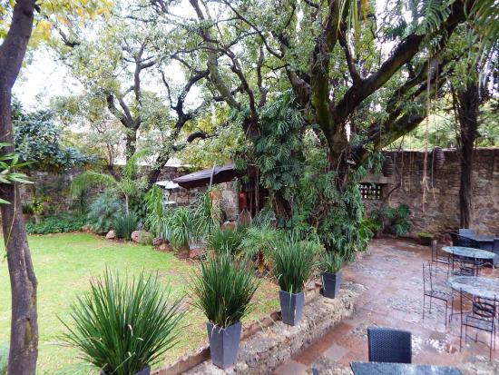 Jard n picture of el jardin de los milagros guanajuato for El jardin de vikera