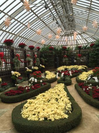 Phipps Conservatory: photo3.jpg