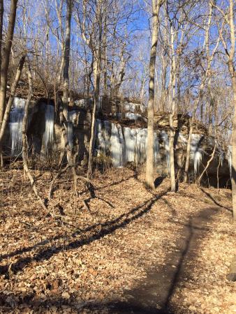 Wildwood, MO: A trial