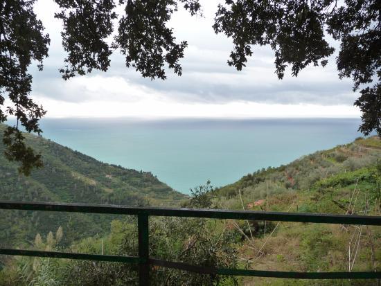 Santuario di Nostra Signora di Reggio: View from Santuario