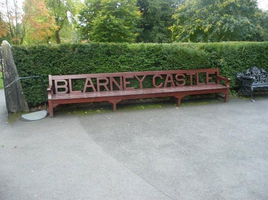 Blarney Kalesi ve Bahçeleri: Bench on the grounds of the blarney castle