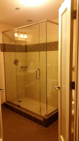 Hotel Julien Dubuque: 20160113_201806_large.jpg