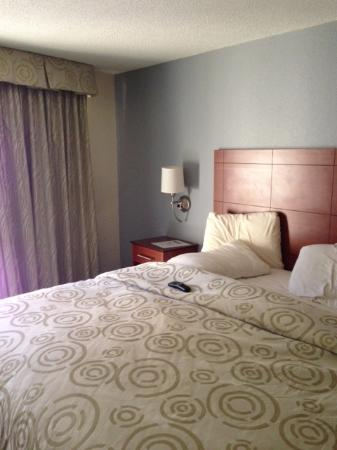 River's Edge Motel: Drapes and bedding seem brand new