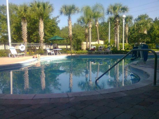 Holiday Inn Express Hotel and Suites Orlando-Lake Buena Vista South: La pileta