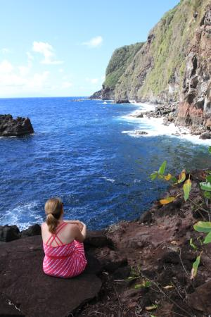 Jungle Bay, Dominica: View of the ocean from a nearby hiking trail
