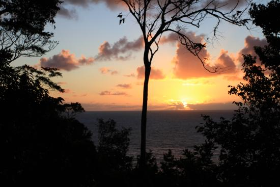 Jungle Bay, Dominica: Sunrise view from our room