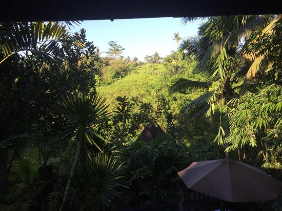 Bidadari Private Villas & Retreat - Ubud: photo1.jpg
