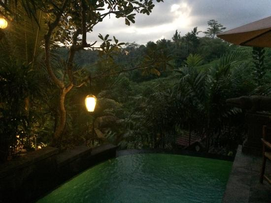 Bidadari Private Villas & Retreat - Ubud: photo2.jpg