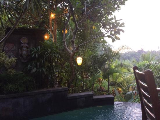 Bidadari Private Villas & Retreat - Ubud: photo3.jpg