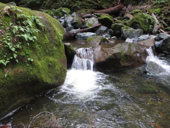 Kenwood, CA: falls 4