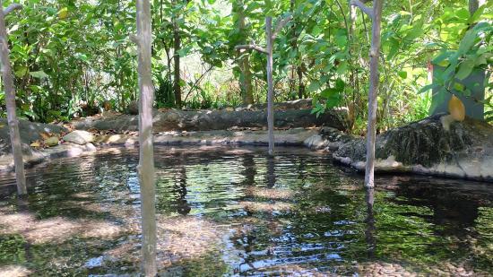 The Banjaran Hotsprings Retreat: Reflexology pool
