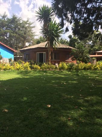 Wondo Genet, Ethiopia: photo1.jpg