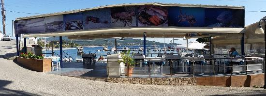 Thessalonikia Fish Tavern