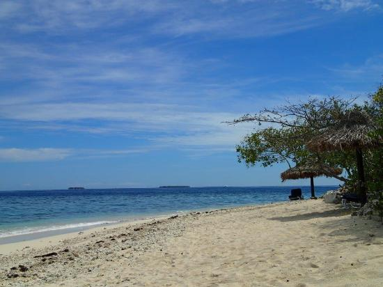 Navini Island, Fiji: Beach on North side