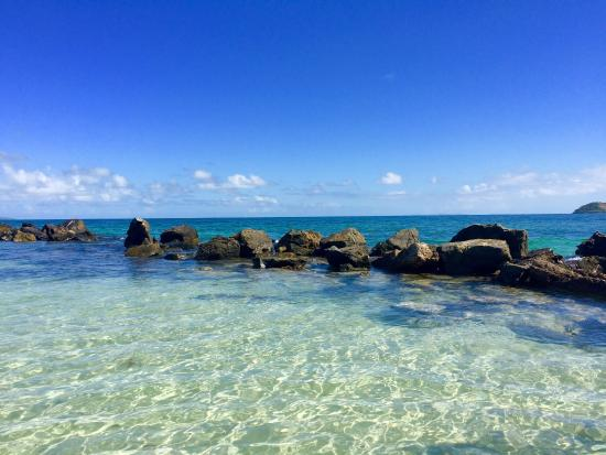 Ceiba, Пуэрто-Рико: photo1.jpg
