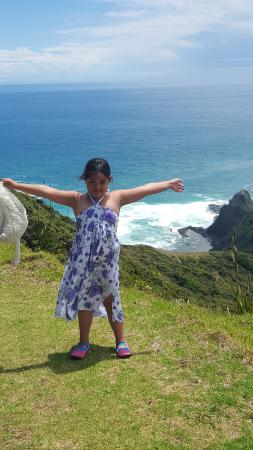 Cape Tours Petricevich: Milan at Cape Reinga 12/1/16
