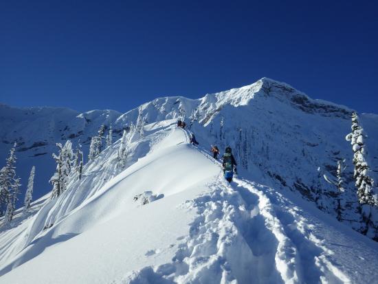 Fernie Alpine Resort: Powder off pist within the ski area