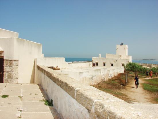 Castillo Sancti Petri
