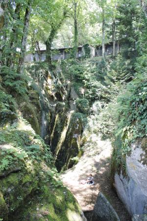 Chiusi della Verna, Ιταλία: scorci del bosco