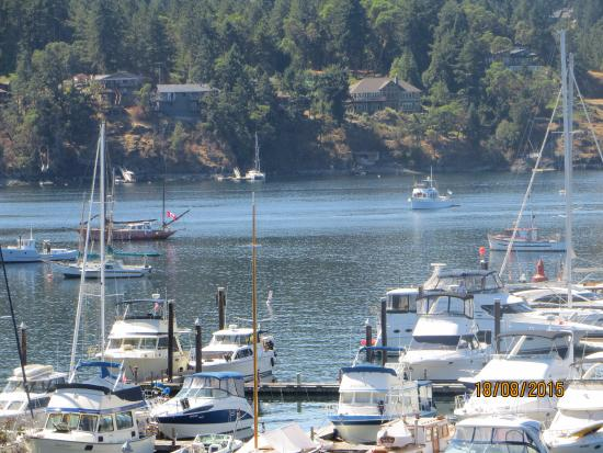 Brentwood Bay Resort & Spa: boats