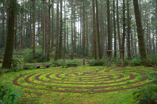 Port Orford, OR: Maze