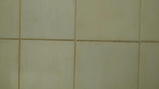 Campanile Leicester: Disgusting sticky mould on bathroom tiles