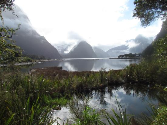 Milford Sound: Just Beautiful