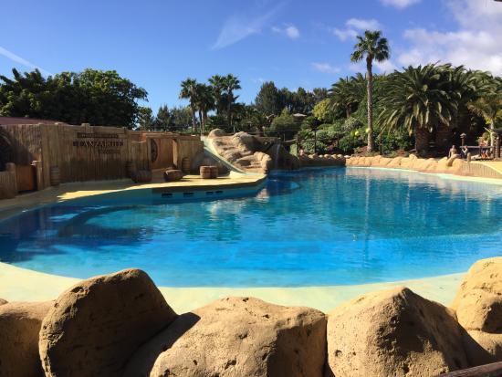 photo2.jpg - Picture of Rancho Texas Lanzarote Park, Puerto Del Carmen - Trip...