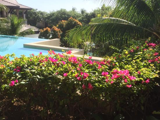 Crimson Resort and Spa, Mactan: ロビー