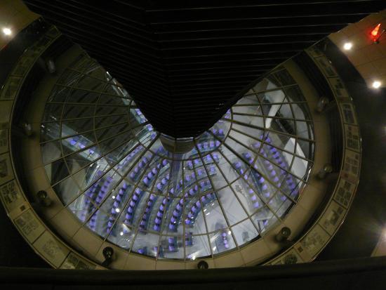 interno foto di parlamento tedesco berlino tripadvisor