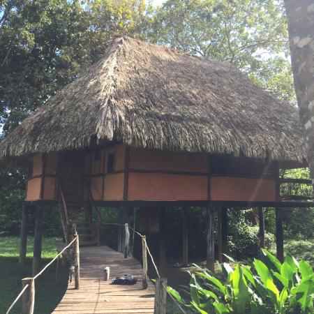 Cotton Tree Lodge: Room/hut exterior