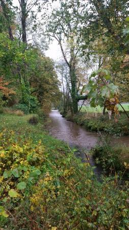 Blarney Castle & Gardens: Stream at Blarney grounds
