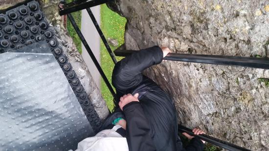 Blarney Castle & Gardens: Kissing the Stone