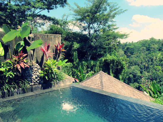 private pool picture of black penny villas ubud ubud tripadvisor rh tripadvisor co uk