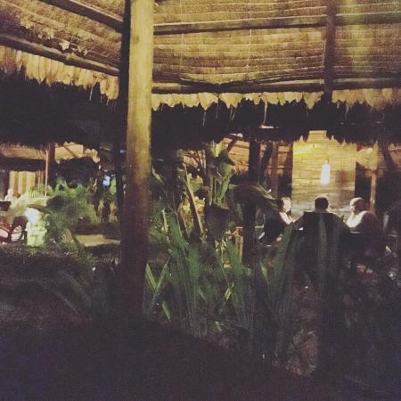 Tangram Garden: photo1.jpg