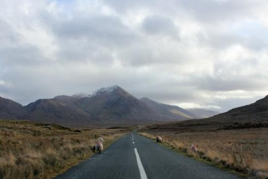 Clifden Bay Lodge: on the road to leenane