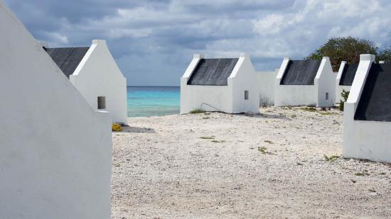 White slave hut picture of slave huts kralendijk - The dive hut bonaire ...