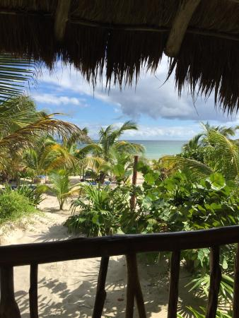 Almaplena Eco Resort & Beach Club: Our View During Lunch