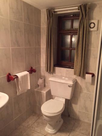 Middlemarsh, UK: Toilet