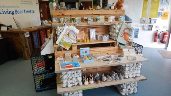 Living Seas Centre: The small but well stocked gift shop