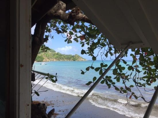 Speyside, Tobago: View from Jemma's
